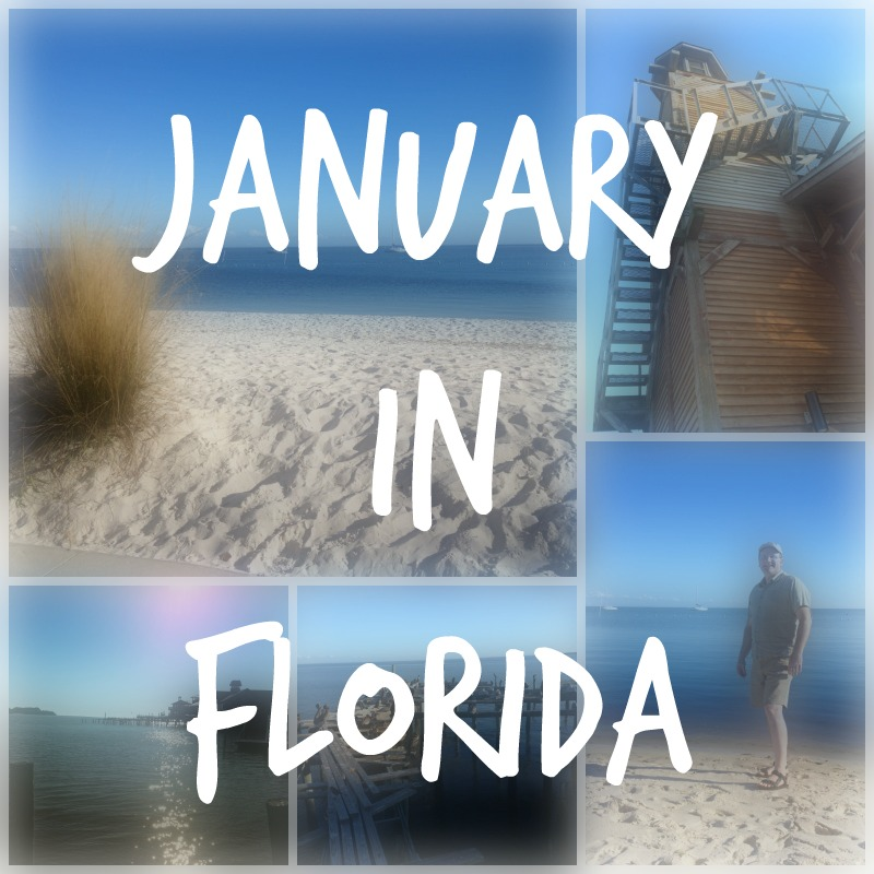 Hello Florida – You're Irresistible!