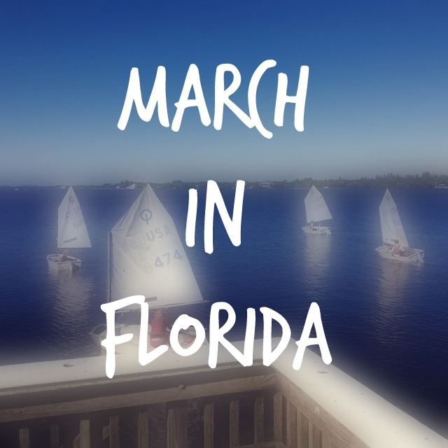 Hello Florida – Part 2